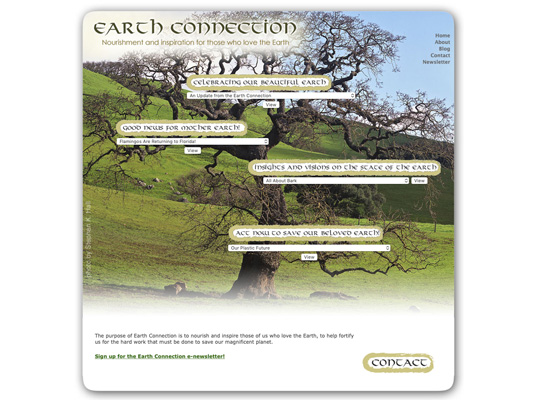 The Earth Connection blog for April Moore